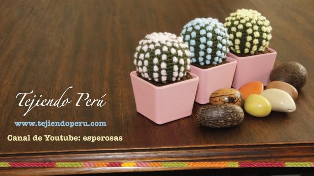 Cactus fantasi?a amigurumi tejidos a crochet