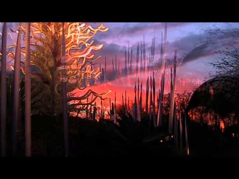 Chihuly January 2014 Movie