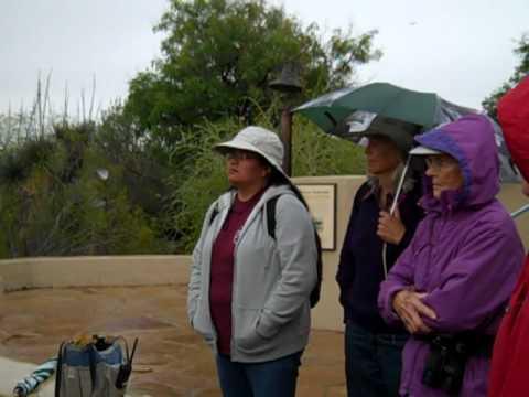 Visit to the Desert Botanical Garden