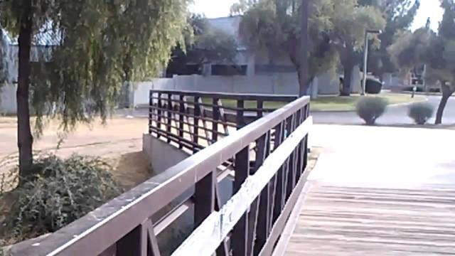 Phoenix Az. Desert west park