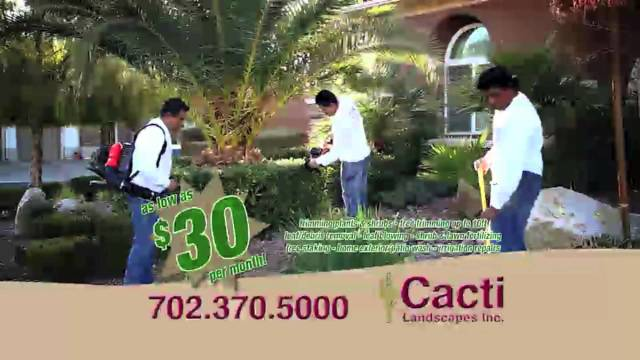 Cacti Landscapes Inc. – Your Landscape Maintenance Solution in Las Vegas