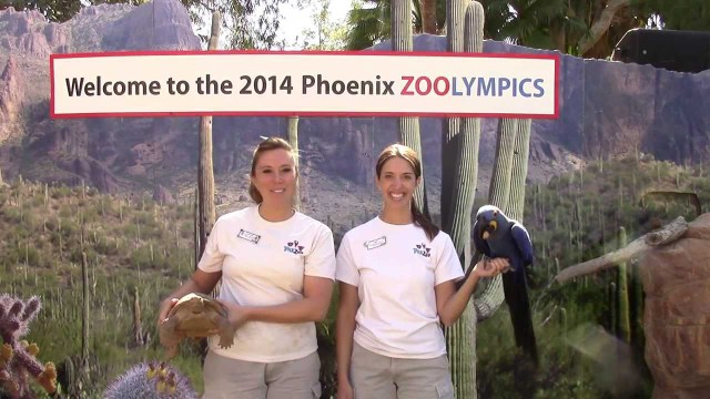 2014 ZOOLYMPICS at the Phoenix Zoo
