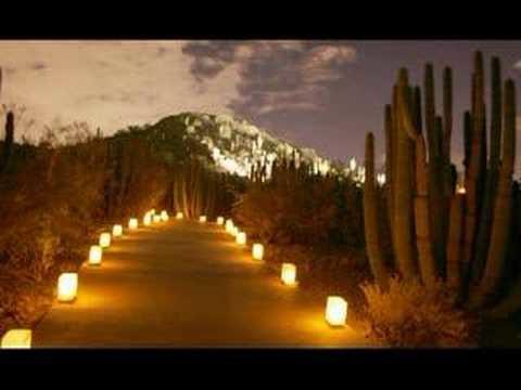 Desert Botanical Gardens Luminarias