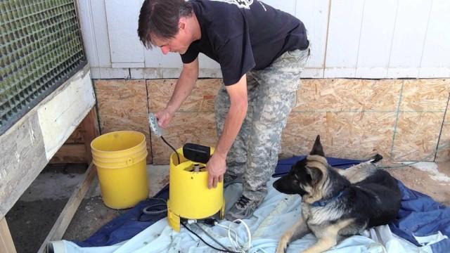 DIY Circulating Dog Water Bowl
