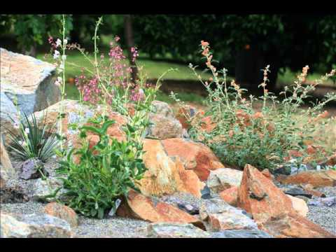 Awesome Desert Landscaping Ideas – Desert Garden Ideas