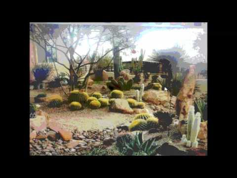 Grass 2 Rock Desert Landscaping