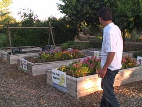 Gardening in the Desert Southwest  – Food Crops You Can Grow in St George Utah