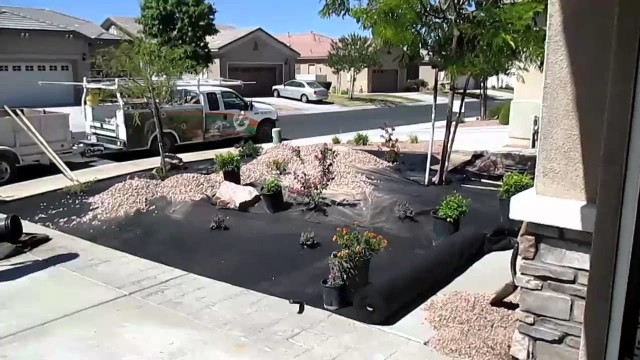 Converting our yards to desert landscaping xeriscape
