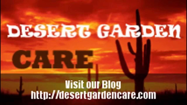 Desert Gardens and Desert Plants Videos