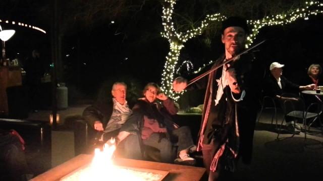 The Dead Sea Song-Traveler-Desert Botanical Gardens-Lumi Fest-20141212-1811