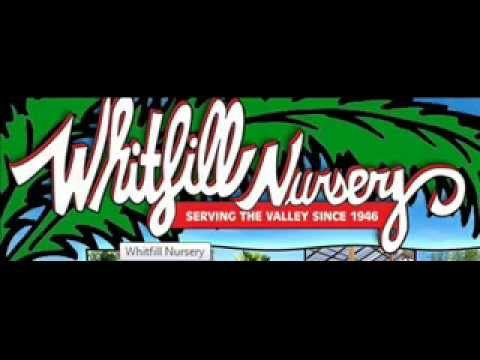 Whitfill Nursery Garden Show, February 7th 2015 – Arizona Desert Gardening