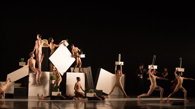 Cacti trailer | The National Ballet of Canada | 2016