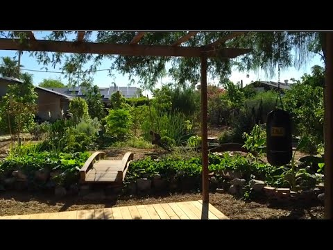 Amazing Garden Tour – Paradise in Phoenix, Arizona