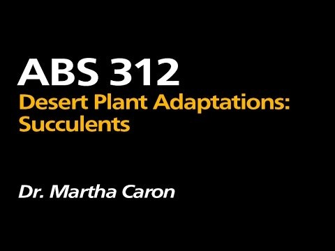 ABS 312: Desert Plant Adaptations: Succulents