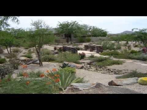 Desert Landscaping Ideas | Desert Landscaping Ideas Pictures