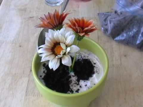 """Potted Plant"" Ice Cream Cake – Mother's Day Dessert"