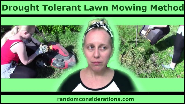 Drought Tolerant Lawn Mowing Method – Episode 18