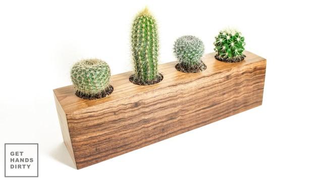 Cactus Planter // Vaso para Catos