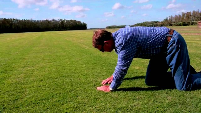 S&K Sod Co. Inc | St. Cloud, FL | Drought Tolerant Grass