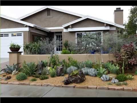 Agave Plant Landscaping | Decorating Idea With House Plants Picture Collection Romance
