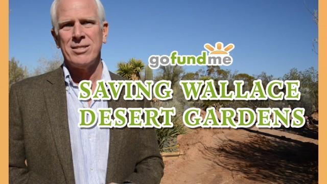 Saving Wallace Desert Gardens – GoFundMe