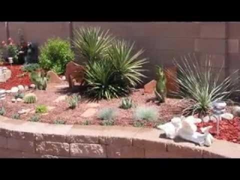 Easy Cactus garden ideas