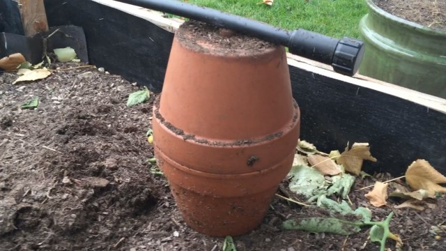 Making and Installing Ollas in the Garden – an Ancient Watering System