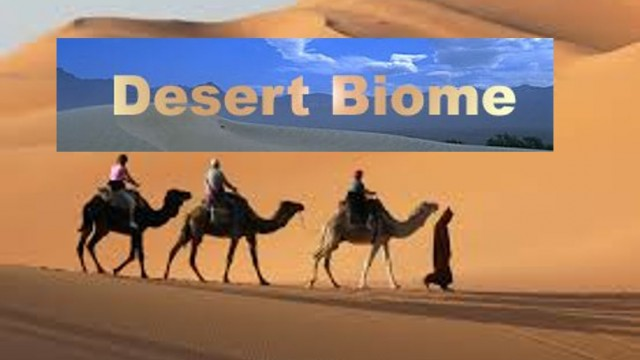 Desert Biomes -Facts about Plants ,Animals and Climate – for Kids