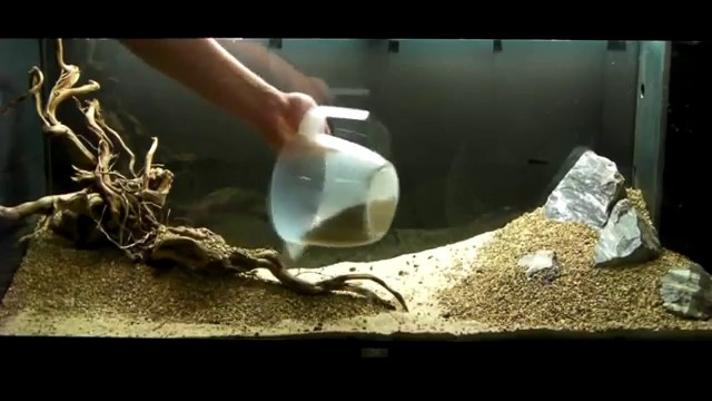 Aquarium Setup – Aquascape – Step by Step and Final Product – Live Planted Fish Tank