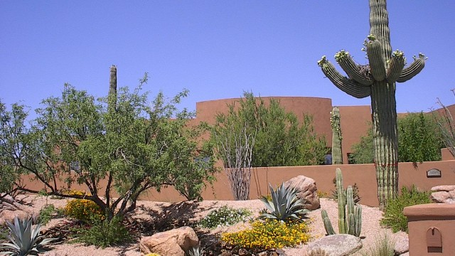 Backyard Desert Landscaping ideas~desert landscaping ideas backyard