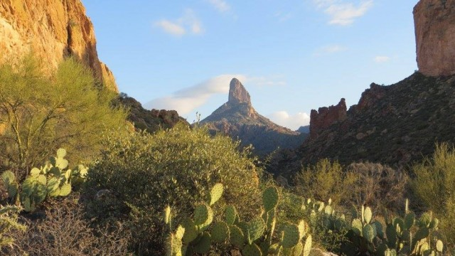Hiking in the Desert – Phoenix Arizona's Superstition Wilderness