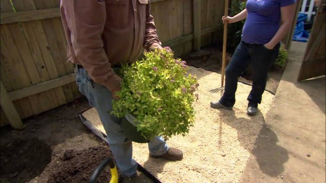 How to Landscape a Small Urban Yard – This Old House