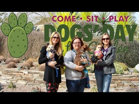 "Desert Botanical Garden – ""Dogs' Day in the Garden"" Annual Event"