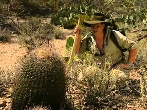 Extreme Survival  – The Arizona Desert – Part 2