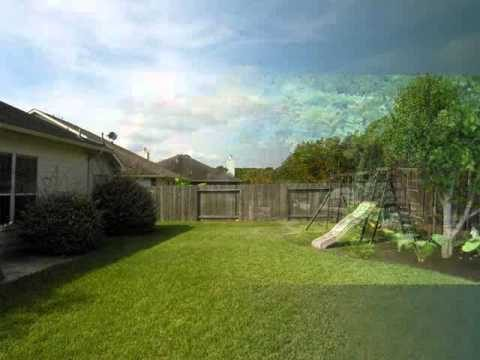 very beautiful backyard collection of photo, image & pictures