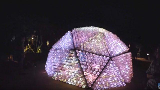 Sonoran Lights at The Desert Botanical Garden – Bruce Munro – 4K 2016 – Phoenix, Arizona