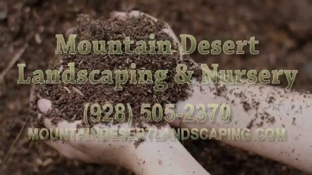 Plant Nursery, Landscaping Design in Lake Havasu City AZ 86403