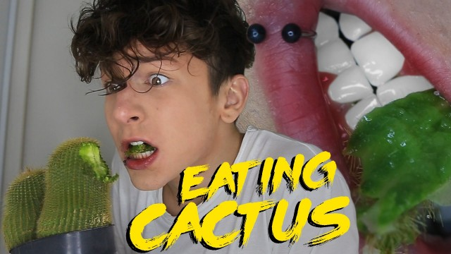 Eating A Cactus!!