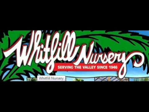 Whitfill Nursery Garden Show, March 7 2015 – Arizona Desert Gardening