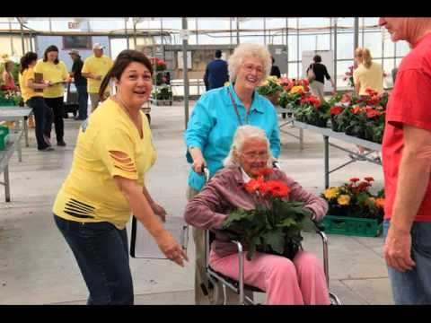Gilroy Rotary/Syngenta Flower Sale 2013