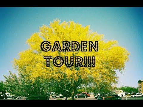 Weekly Desert Garden Tour 04/24/16
