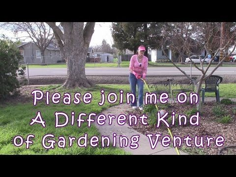 CA Lawn Removal Rebate Program