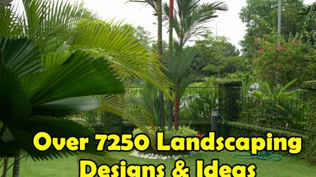Landscaping Ideas for Beginners | Backyards,Front Yards,Gardens,Walkways,Lawns And Many More