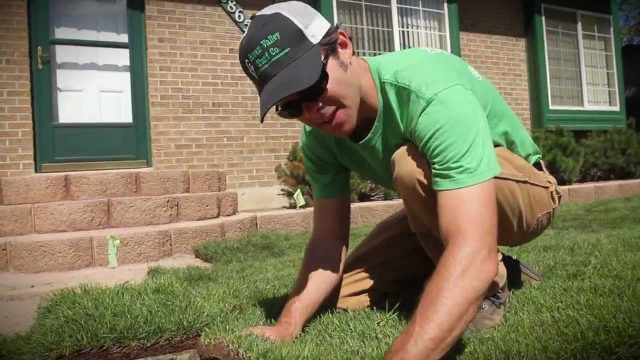 How To Install Sod, Small Front Yard – Green Valley Turf Co