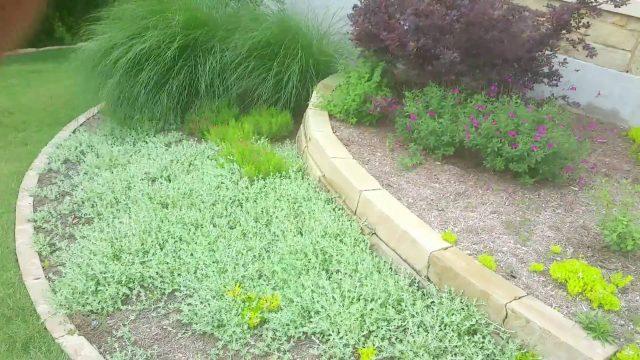 Austin Xeriscape Plants in Landscapes
