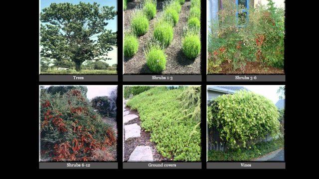 Prescott Water Smart Living and Gardening