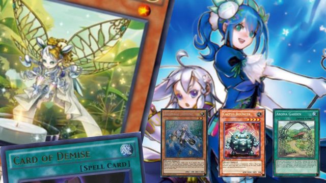 An Aroma Deck with Aromaseraphy Angelica, Cactus Bouncer AND Card of Demise… (AWW SH!T)