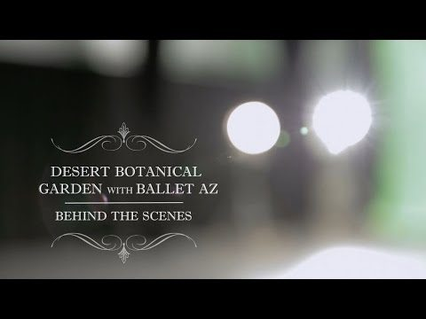 Behind the Scenes of Round – Ballet Arizona at Desert Botanical Garden