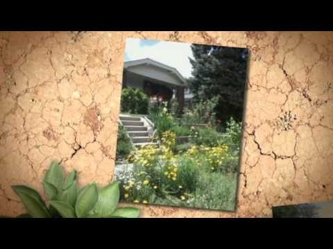 Xeric landscapes in Denver Water's service area
