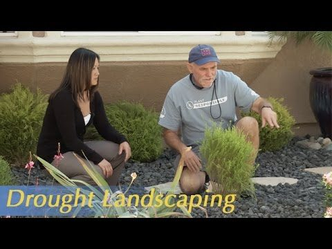 Growing California video series: Drought Landscaping